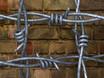 Stacheldraht  Barbed Wire