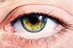 Das Auge- Das Fenster zur Seele